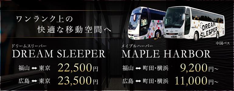中国バス『ドリームスリーパー』特集