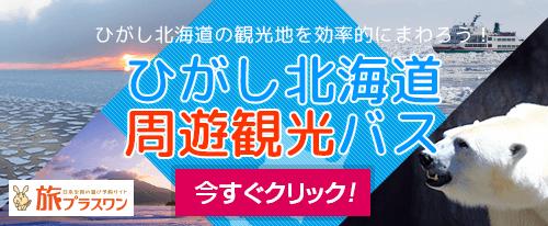 旅プラスワンのひがし北海道周遊観光バス特集