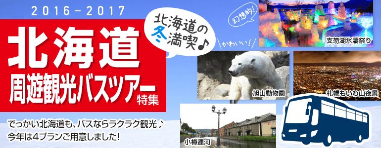 北海道で冬・満喫!バスツアー特集