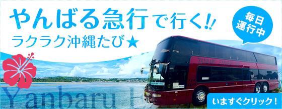 やんばる急行で行く!ラクラク沖縄バス旅!
